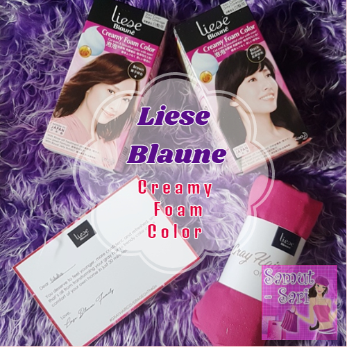 Liese Blaune Creamy Foam Color